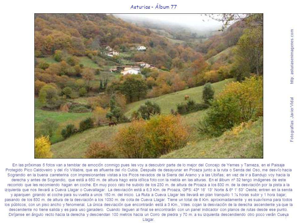 7 Asturias - Álbum 77 Fotografías: Javier Vidal http: asturiasenimagenes.com En las próximas 5 fotos van a temblar de emoción conmigo pues les voy a d