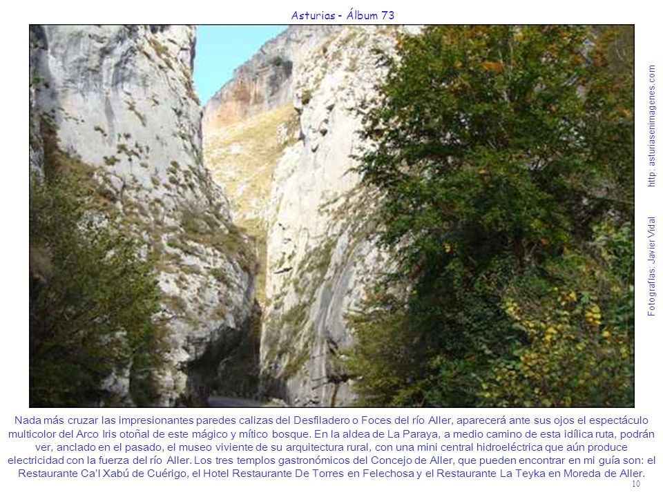 10 Asturias - Álbum 73 Fotografías: Javier Vidal http: asturiasenimagenes.com Nada más cruzar las impresionantes paredes calizas del Desfiladero o Foc