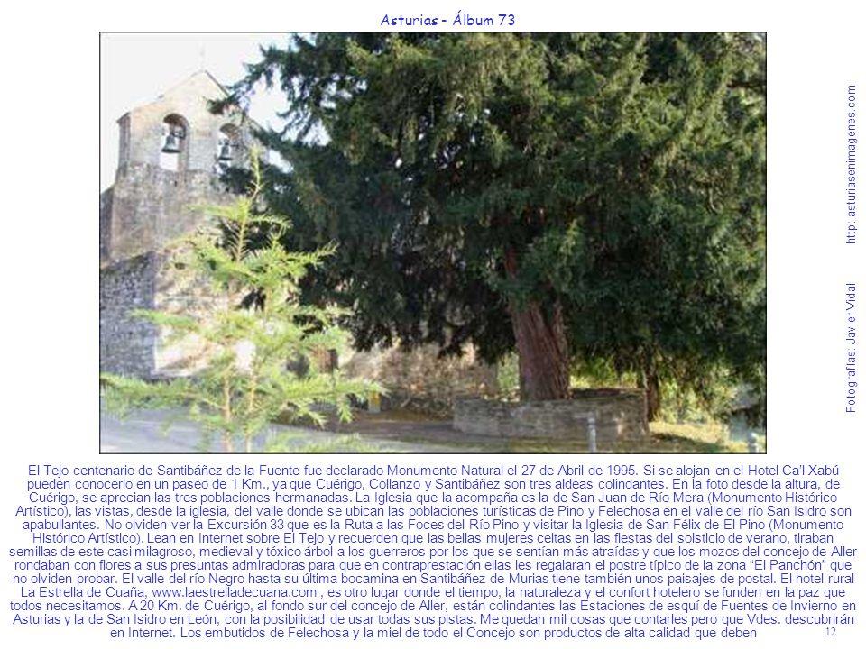 12 Asturias - Álbum 73 Fotografías: Javier Vidal http: asturiasenimagenes.com El Tejo centenario de Santibáñez de la Fuente fue declarado Monumento Na