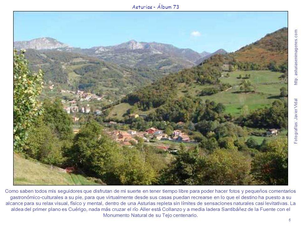 7 Asturias - Álbum 73 Fotografías: Javier Vidal http: asturiasenimagenes.com Estas verdes praderías junto al río Aller, mantienen en Octubre su fragancia después de pasar en 2008 uno de los veranos más secos de los últimos años.