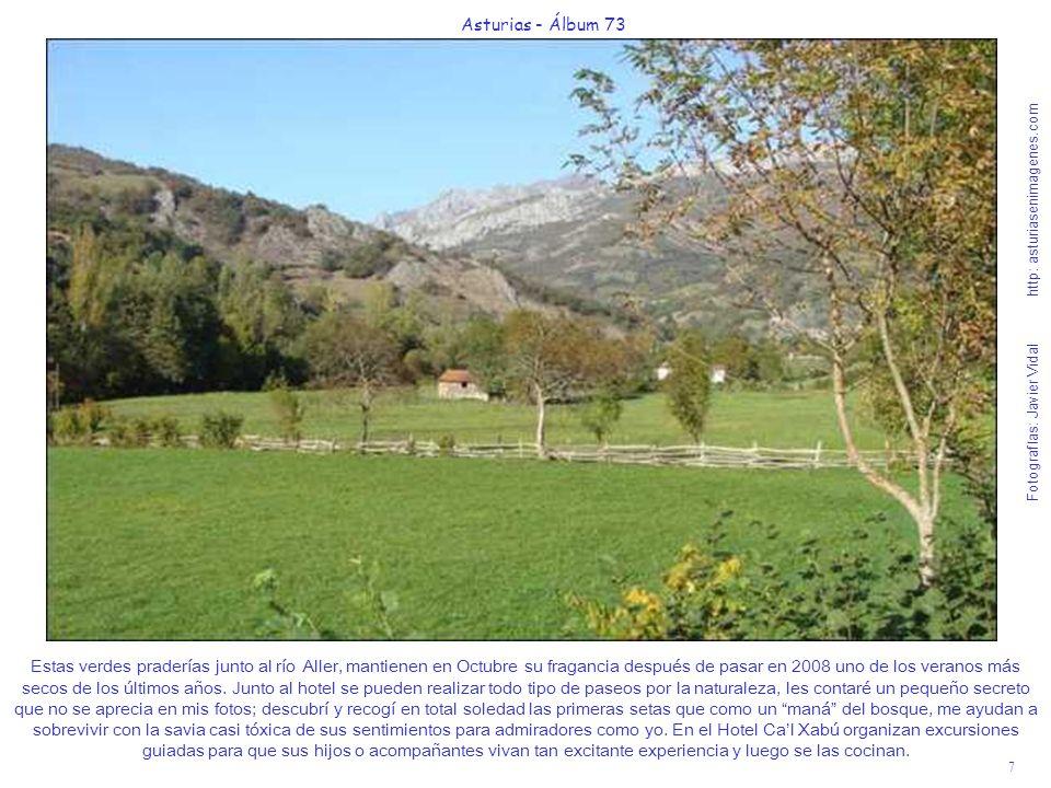 7 Asturias - Álbum 73 Fotografías: Javier Vidal http: asturiasenimagenes.com Estas verdes praderías junto al río Aller, mantienen en Octubre su fragan