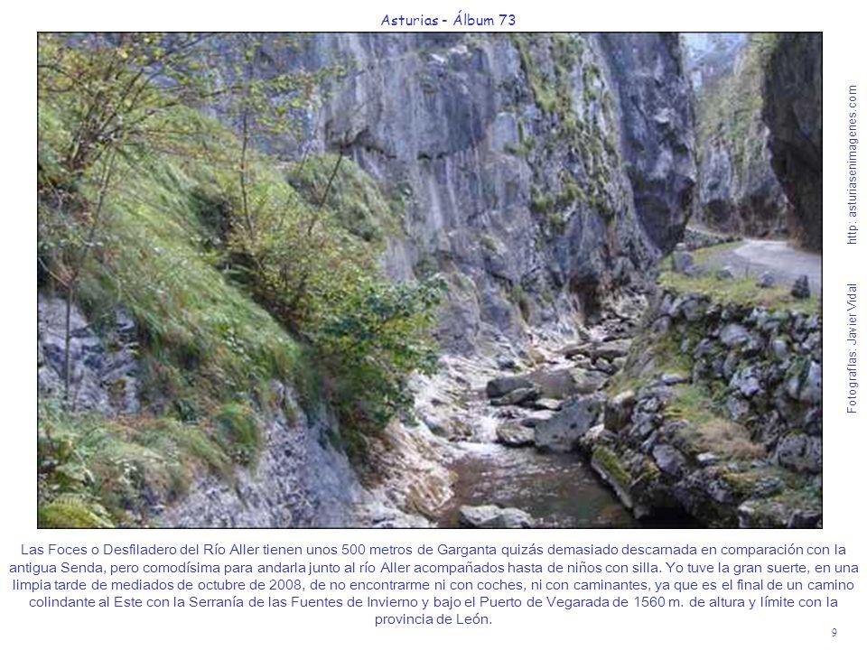 9 Asturias - Álbum 73 Fotografías: Javier Vidal http: asturiasenimagenes.com Las Foces o Desfiladero del Río Aller tienen unos 500 metros de Garganta