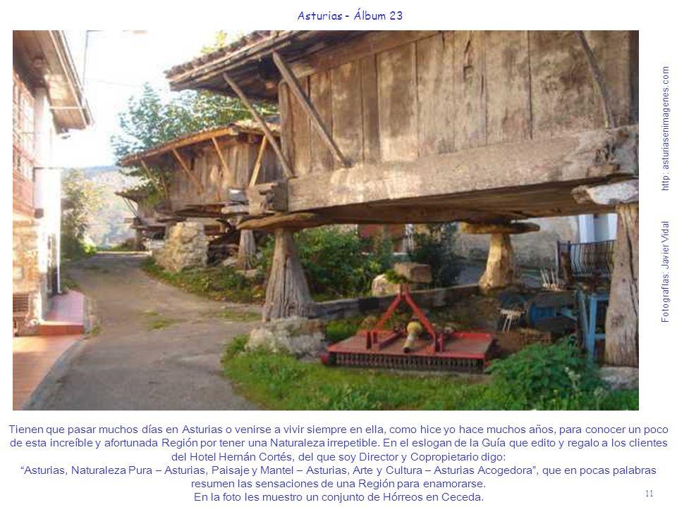 11 Asturias - Álbum 23 Fotografías: Javier Vidal http: asturiasenimagenes.com Tienen que pasar muchos días en Asturias o venirse a vivir siempre en ella, como hice yo hace muchos años, para conocer un poco de esta increíble y afortunada Región por tener una Naturaleza irrepetible.