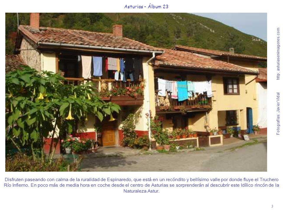 3 Asturias - Álbum 23 Fotografías: Javier Vidal http: asturiasenimagenes.com Disfruten paseando con calma de la ruralidad de Espinaredo, que está en un recóndito y bellísimo valle por donde fluye el Truchero Río Infierno.