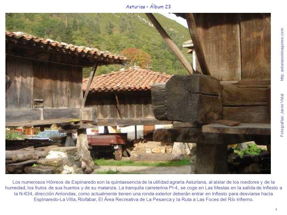 4 Asturias - Álbum 23 Fotografías: Javier Vidal http: asturiasenimagenes.com Los numerosos Hórreos de Espinaredo son la quintaesencia de la utilidad agraria Asturiana, al aislar de los roedores y de la humedad, los frutos de sus huertos y de su matanza.