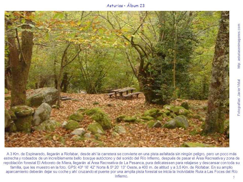 5 Asturias - Álbum 23 Fotografías: Javier Vidal http: asturiasenimagenes.com A 3 Km.