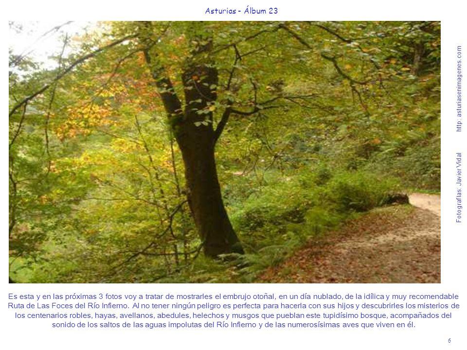 6 Asturias - Álbum 23 Fotografías: Javier Vidal http: asturiasenimagenes.com Es esta y en las próximas 3 fotos voy a tratar de mostrarles el embrujo otoñal, en un día nublado, de la idílica y muy recomendable Ruta de Las Foces del Río Infierno.