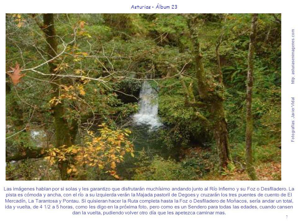 7 Asturias - Álbum 23 Fotografías: Javier Vidal http: asturiasenimagenes.com Las imágenes hablan por si solas y les garantizo que disfrutarán muchísimo andando junto al Río Infierno y su Foz o Desfiladero.