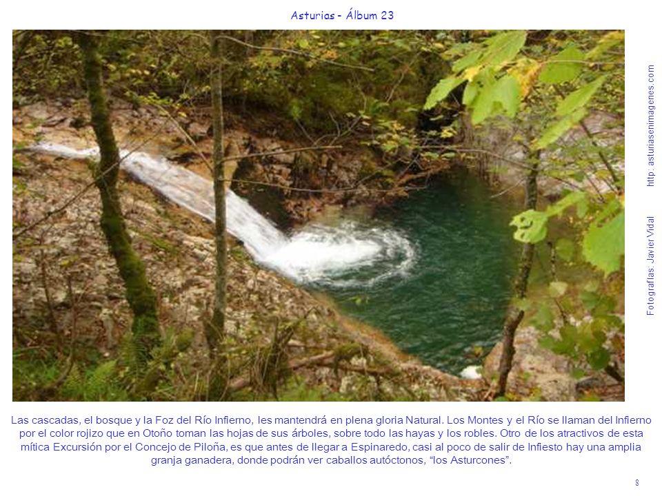 8 Asturias - Álbum 23 Fotografías: Javier Vidal http: asturiasenimagenes.com Las cascadas, el bosque y la Foz del Río Infierno, les mantendrá en plena gloria Natural.