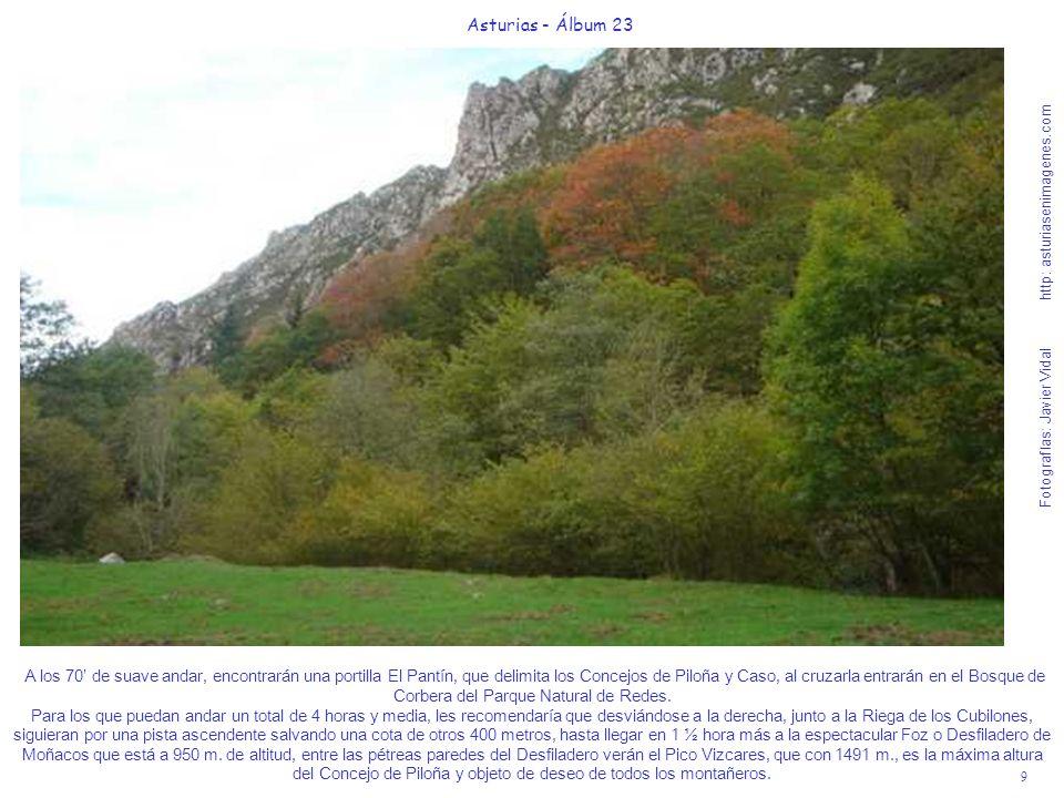 9 Asturias - Álbum 23 Fotografías: Javier Vidal http: asturiasenimagenes.com A los 70 de suave andar, encontrarán una portilla El Pantín, que delimita los Concejos de Piloña y Caso, al cruzarla entrarán en el Bosque de Corbera del Parque Natural de Redes.