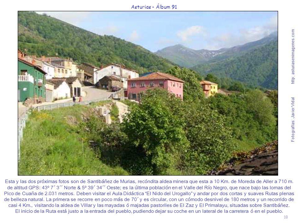 10 Asturias - Álbum 91 Fotografías: Javier Vidal http: asturiasenimagenes.com Esta y las dos próximas fotos son de Santibáñez de Murias, recóndita ald