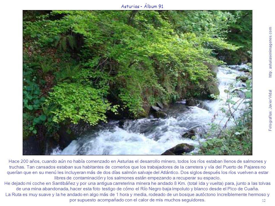 12 Asturias - Álbum 91 Fotografías: Javier Vidal http: asturiasenimagenes.com Hace 200 años, cuando aún no había comenzado en Asturias el desarrollo m
