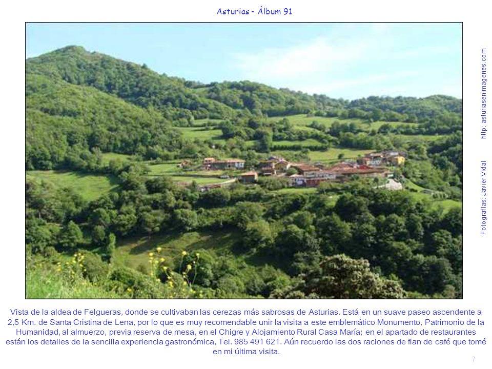 7 Asturias - Álbum 91 Fotografías: Javier Vidal http: asturiasenimagenes.com Vista de la aldea de Felgueras, donde se cultivaban las cerezas más sabro