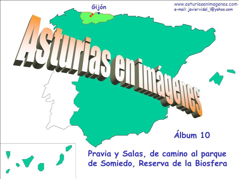1 Asturias - Álbum 10 Gijón Pravia y Salas, de camino al parque de Somiedo, Reserva de la Biosfera Álbum 10 www.asturiasenimagenes.com e-mail: javierv