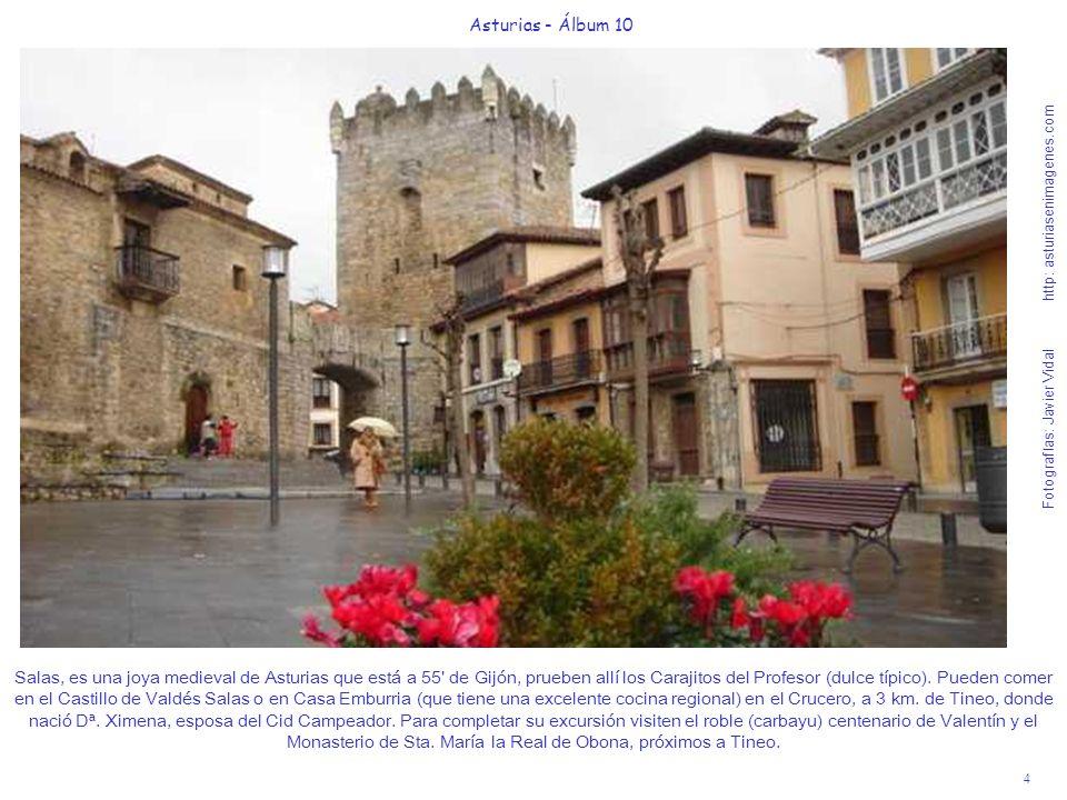 4 Asturias - Álbum 10 Fotografías: Javier Vidal http: asturiasenimagenes.com Salas, es una joya medieval de Asturias que está a 55' de Gijón, prueben