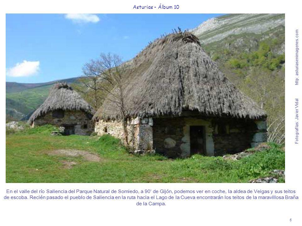 6 Asturias - Álbum 10 Fotografías: Javier Vidal http: asturiasenimagenes.com En el valle del río Saliencia del Parque Natural de Somiedo, a 90 de Gijó