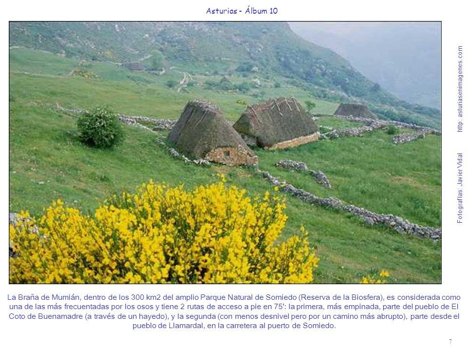 7 Asturias - Álbum 10 Fotografías: Javier Vidal http: asturiasenimagenes.com La Braña de Mumián, dentro de los 300 km2 del amplio Parque Natural de So
