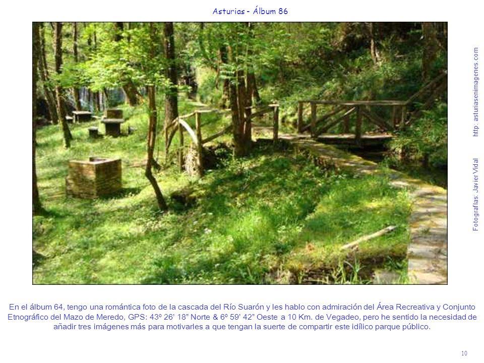 10 Asturias - Álbum 86 Fotografías: Javier Vidal http: asturiasenimagenes.com En el álbum 64, tengo una romántica foto de la cascada del Río Suarón y
