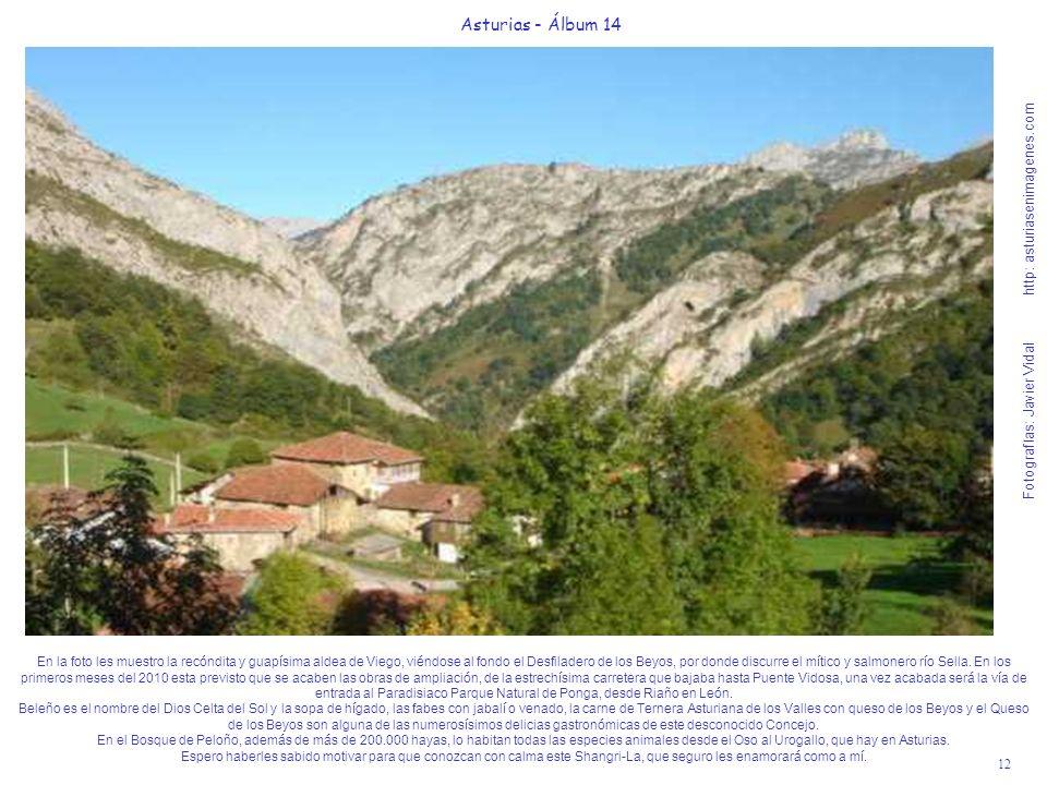12 Asturias - Álbum 14 Fotografías: Javier Vidal http: asturiasenimagenes.com En la foto les muestro la recóndita y guapísima aldea de Viego, viéndose