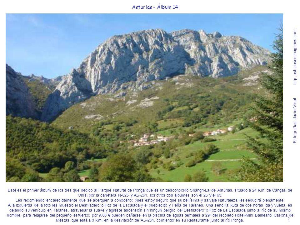 2 Asturias - Álbum 14 Fotografías: Javier Vidal http: asturiasenimagenes.com Este es el primer álbum de los tres que dedico al Parque Natural de Ponga