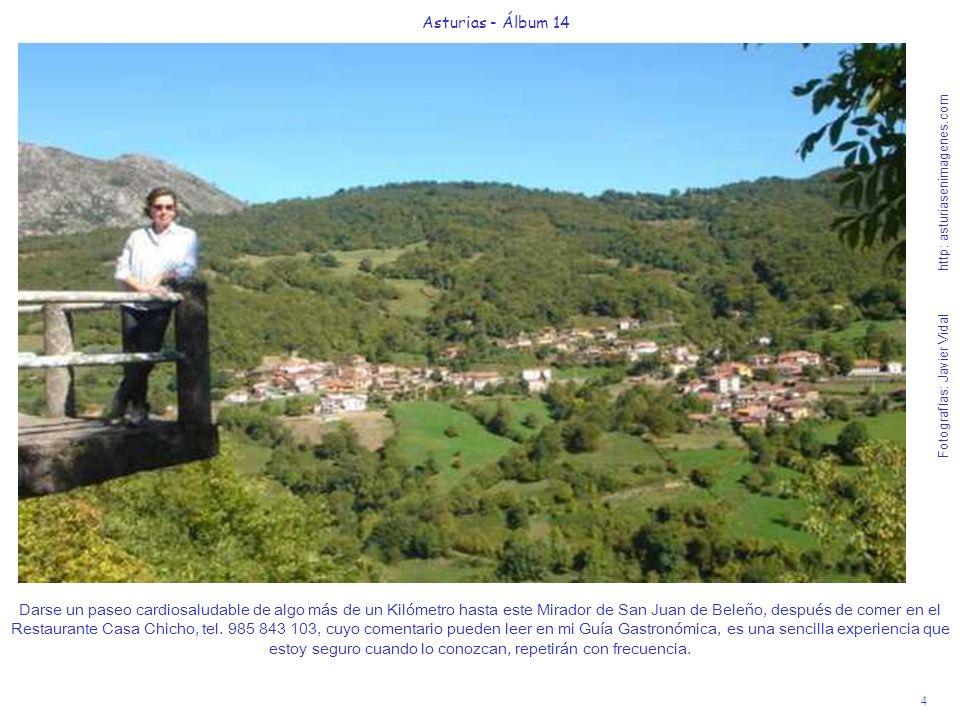 4 Asturias - Álbum 14 Fotografías: Javier Vidal http: asturiasenimagenes.com Darse un paseo cardiosaludable de algo más de un Kilómetro hasta este Mir