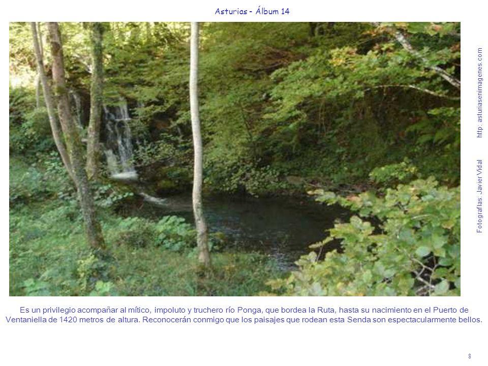 8 Asturias - Álbum 14 Fotografías: Javier Vidal http: asturiasenimagenes.com Es un privilegio acompañar al mítico, impoluto y truchero río Ponga, que