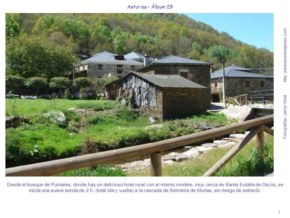3 Asturias - Álbum 29 Fotografías: Javier Vidal http: asturiasenimagenes.com Desde el bosque de Pumares, donde hay un delicioso hotel rural con el mis