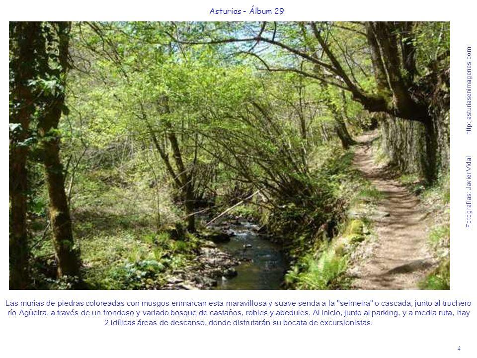 4 Asturias - Álbum 29 Fotografías: Javier Vidal http: asturiasenimagenes.com Las murias de piedras coloreadas con musgos enmarcan esta maravillosa y s
