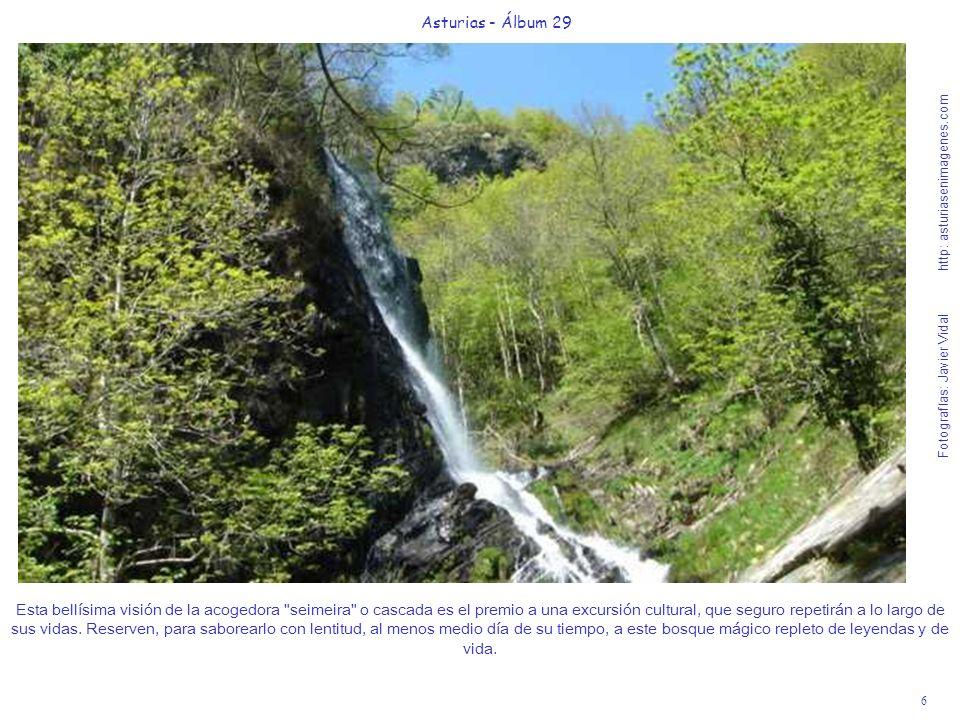 6 Asturias - Álbum 29 Fotografías: Javier Vidal http: asturiasenimagenes.com Esta bellísima visión de la acogedora
