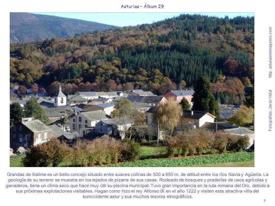 9 Asturias - Álbum 29 Fotografías: Javier Vidal http: asturiasenimagenes.com Grandas de Salime es un bello concejo situado entre suaves colinas de 500