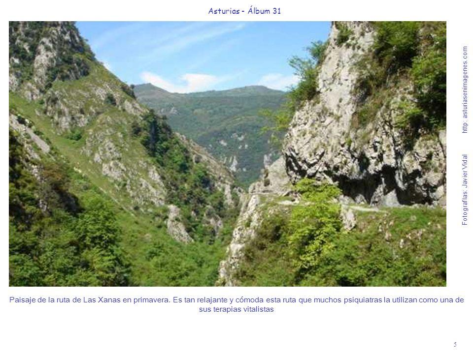 5 Asturias - Álbum 31 Fotografías: Javier Vidal http: asturiasenimagenes.com Paisaje de la ruta de Las Xanas en primavera. Es tan relajante y cómoda e
