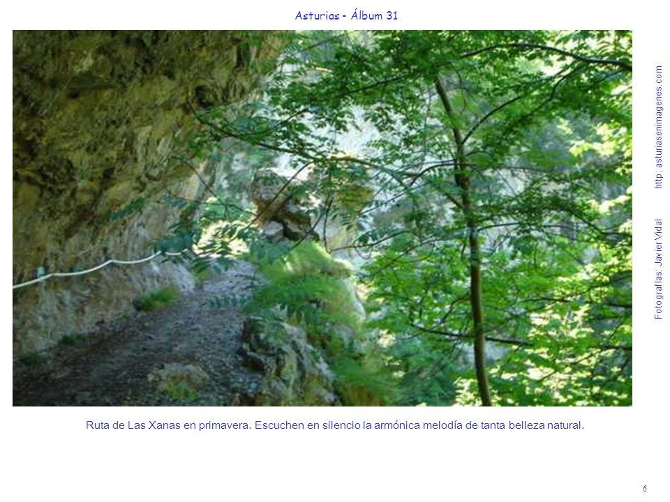 6 Asturias - Álbum 31 Fotografías: Javier Vidal http: asturiasenimagenes.com Ruta de Las Xanas en primavera. Escuchen en silencio la armónica melodía