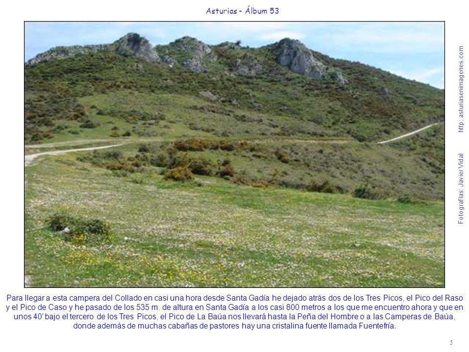 5 Asturias - Álbum 53 Fotografías: Javier Vidal http: asturiasenimagenes.com Para llegar a esta campera del Collado en casi una hora desde Santa Gadía he dejado atrás dos de los Tres Picos, el Pico del Raso y el Pico de Caso y he pasado de los 535 m.