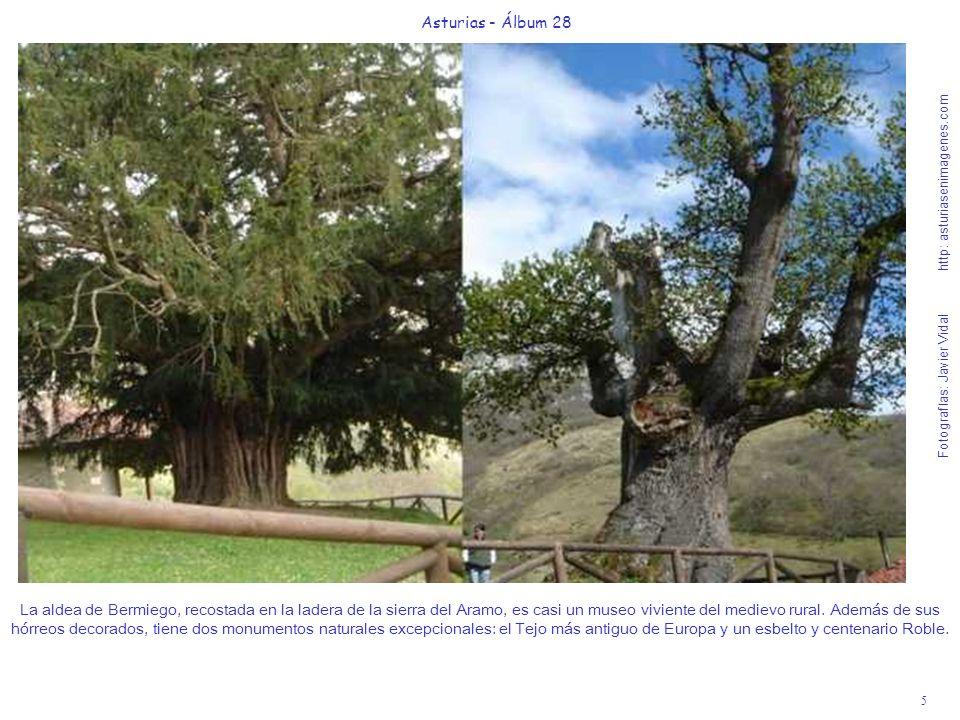 5 Asturias - Álbum 28 Fotografías: Javier Vidal http: asturiasenimagenes.com La aldea de Bermiego, recostada en la ladera de la sierra del Aramo, es c