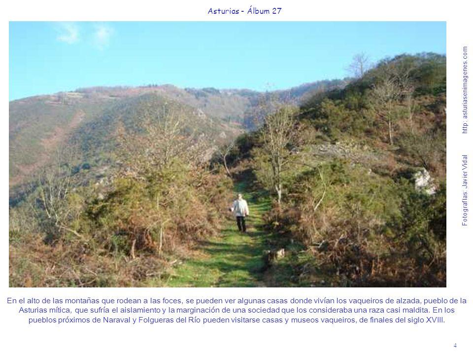 5 Asturias - Álbum 27 Fotografías: Javier Vidal http: asturiasenimagenes.com La suave y agreste ruta de 45 nos permite ver los meandros del transparente y salmonero río Esva, encajonado en pretiles rocosos de hasta 200 m.