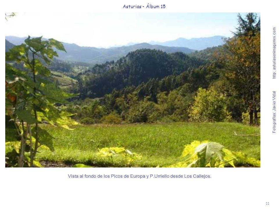 11 Asturias - Álbum 15 Fotografías: Javier Vidal http: asturiasenimagenes.com Vista al fondo de los Picos de Europa y P.Urriello desde Los Callejos.