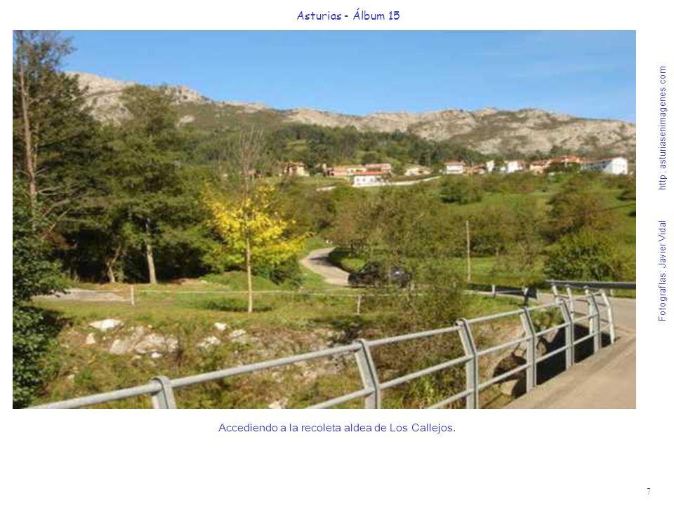 7 Asturias - Álbum 15 Fotografías: Javier Vidal http: asturiasenimagenes.com Accediendo a la recoleta aldea de Los Callejos.