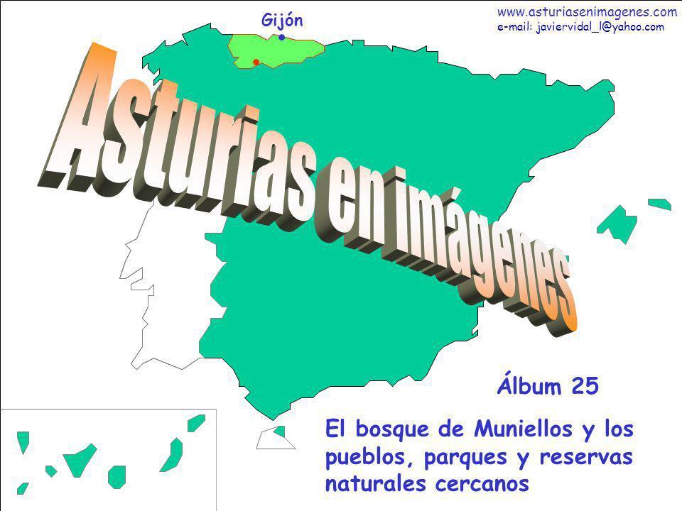 1 Asturias - Álbum 25 Gijón El bosque de Muniellos y los pueblos, parques y reservas naturales cercanos Álbum 25 www.asturiasenimagenes.com e-mail: ja