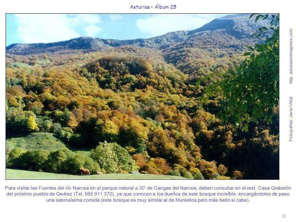 12 Asturias - Álbum 25 Fotografías: Javier Vidal http: asturiasenimagenes.com Para visitar las Fuentes del río Narcea en el parque natural a 30 de Can