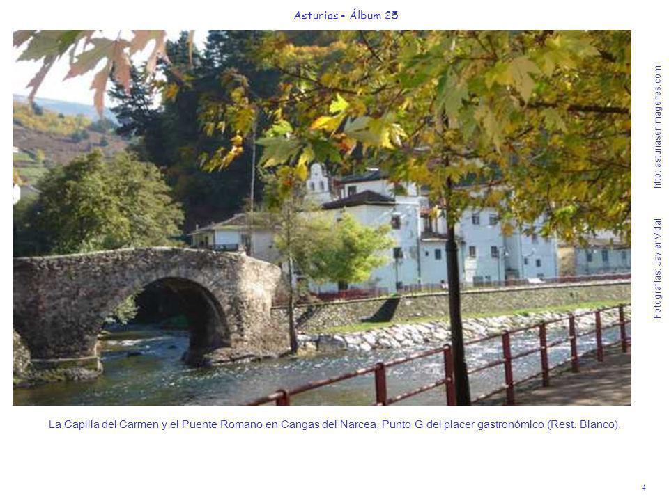 4 Asturias - Álbum 25 Fotografías: Javier Vidal http: asturiasenimagenes.com La Capilla del Carmen y el Puente Romano en Cangas del Narcea, Punto G de