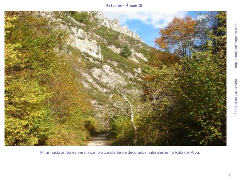11 Asturias - Álbum 18 Fotografías: Javier Vidal http: asturiasenimagenes.com Mirar hacia arriba es ver un cambio constante de decorados naturales en