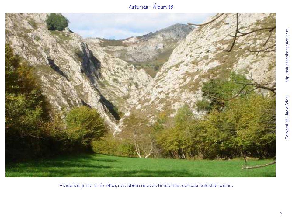 5 Asturias - Álbum 18 Fotografías: Javier Vidal http: asturiasenimagenes.com Praderías junto al río Alba, nos abren nuevos horizontes del casi celesti