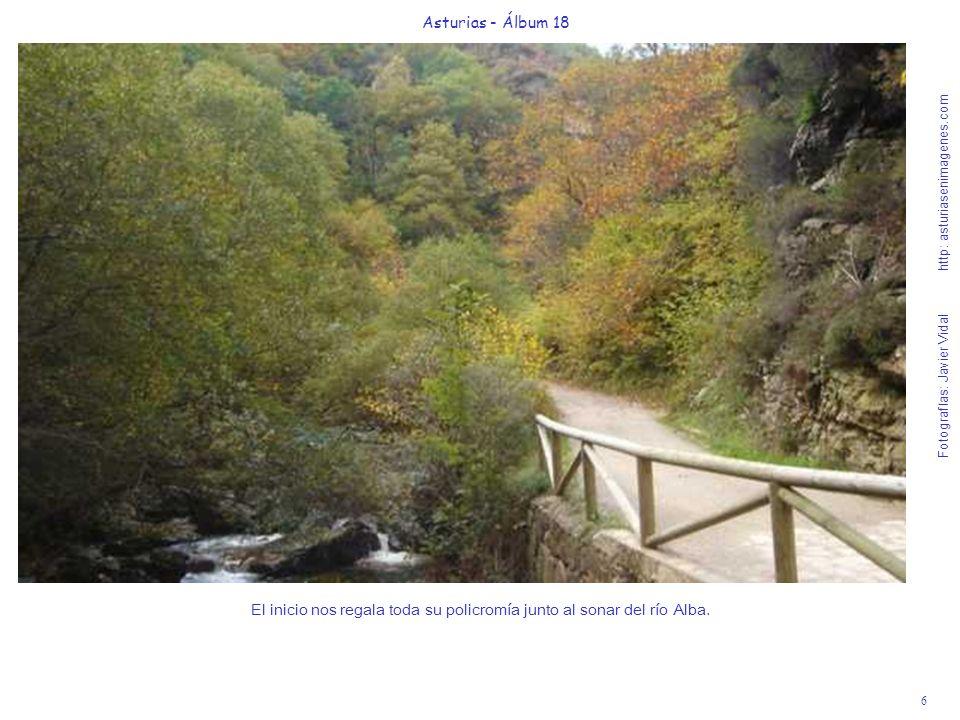 6 Asturias - Álbum 18 Fotografías: Javier Vidal http: asturiasenimagenes.com El inicio nos regala toda su policromía junto al sonar del río Alba.