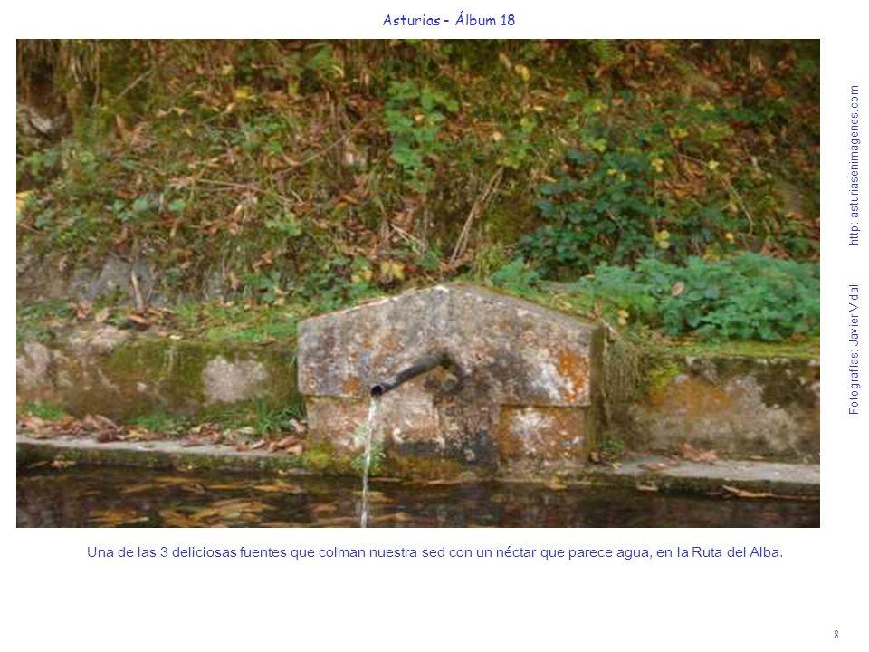 8 Asturias - Álbum 18 Fotografías: Javier Vidal http: asturiasenimagenes.com Una de las 3 deliciosas fuentes que colman nuestra sed con un néctar que