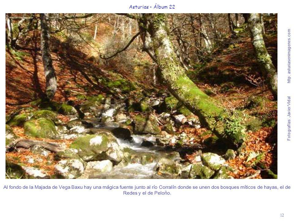 12 Asturias - Álbum 22 Al fondo de la Majada de Vega Baxu hay una mágica fuente junto al río Corralín donde se unen dos bosques míticos de hayas, el d