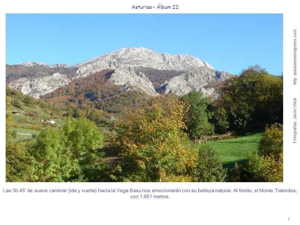 4 Asturias - Álbum 22 Fotografías: Javier Vidal http: asturiasenimagenes.com Al ascender las rampas de la primera collada junto a Pendones, camino hacia el valle del río Corralín es fácil poder ver zorros, al igual que en gran parte de Redes.