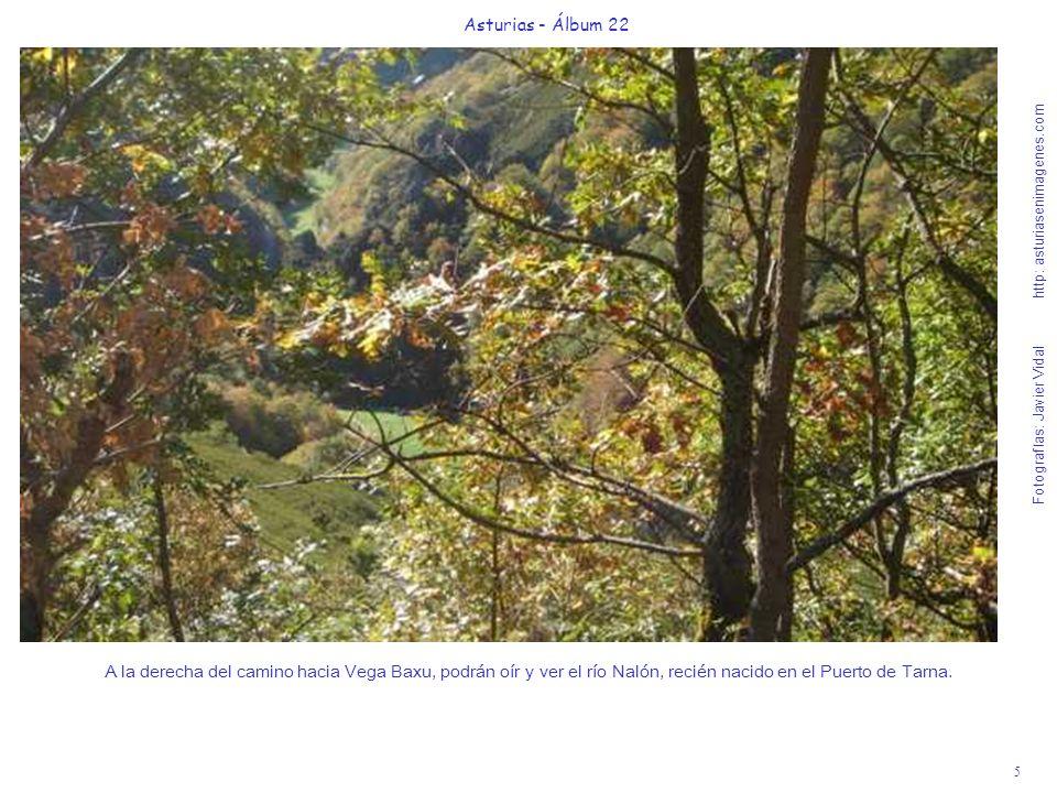 6 Asturias - Álbum 22 Fotografías: Javier Vidal http: asturiasenimagenes.com Esta Ruta a Vega Baxu hay que saborearla con mucha calma.