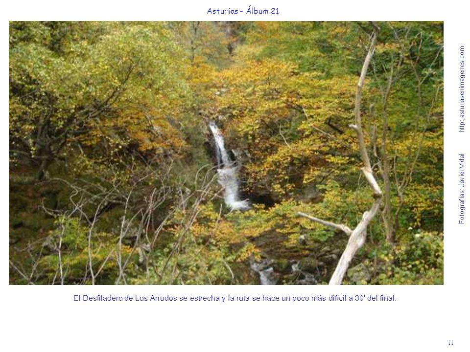 11 Asturias - Álbum 21 Fotografías: Javier Vidal http: asturiasenimagenes.com El Desfiladero de Los Arrudos se estrecha y la ruta se hace un poco más