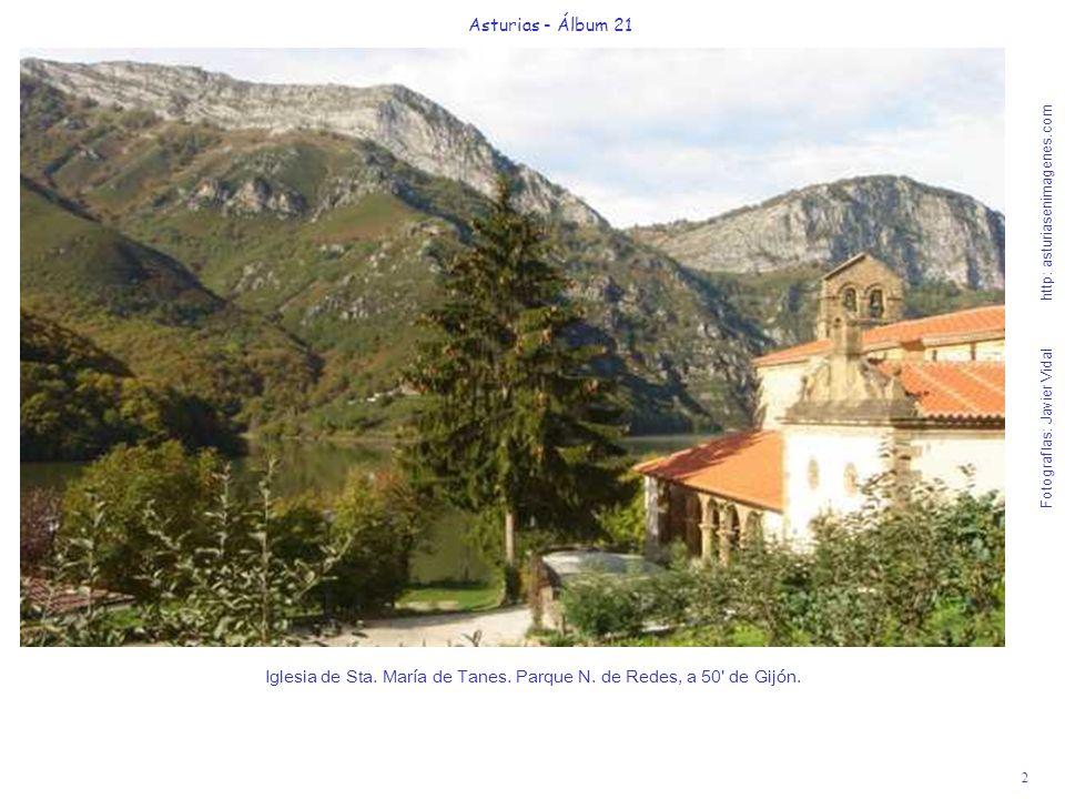 2 Asturias - Álbum 21 Fotografías: Javier Vidal http: asturiasenimagenes.com Iglesia de Sta. María de Tanes. Parque N. de Redes, a 50' de Gijón.