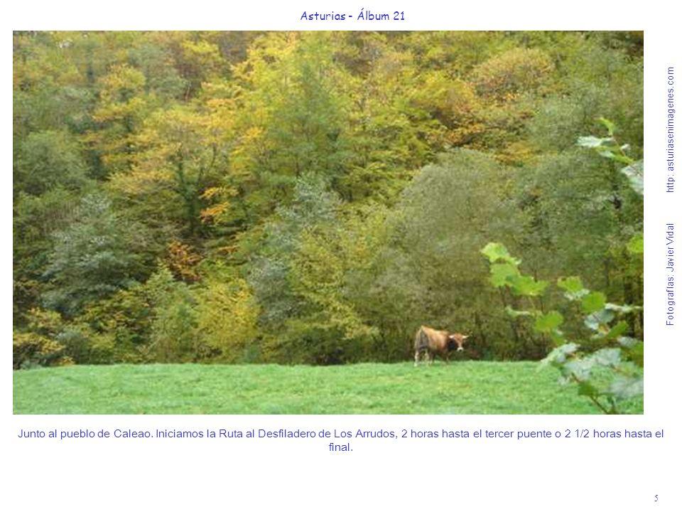 5 Asturias - Álbum 21 Fotografías: Javier Vidal http: asturiasenimagenes.com Junto al pueblo de Caleao. Iniciamos la Ruta al Desfiladero de Los Arrudo